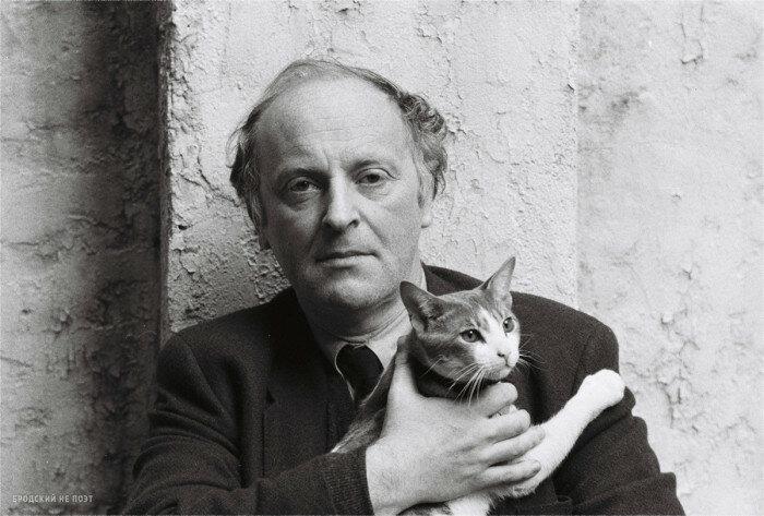 Кто из знаменитых людей очень любил кошек: 7 мужчин и женщин