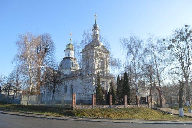 Головні храми Василькова