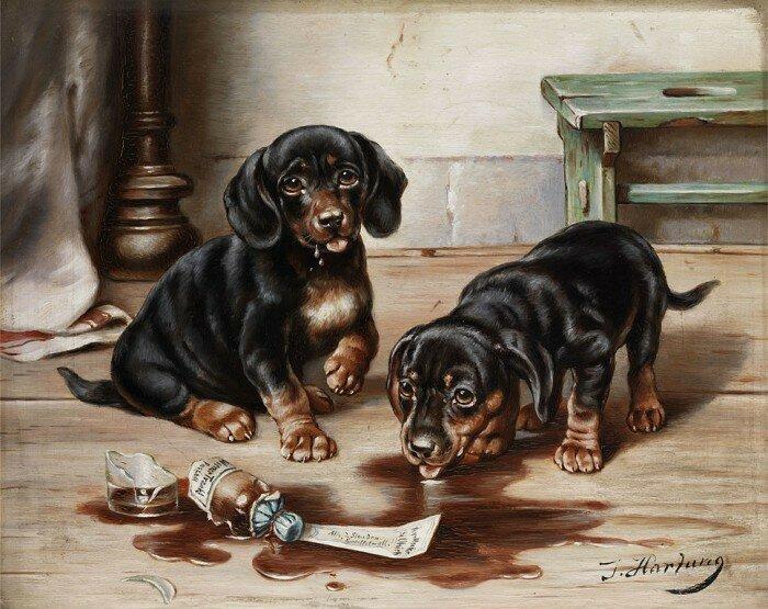 Карл Райхерт. Коты и собаки.