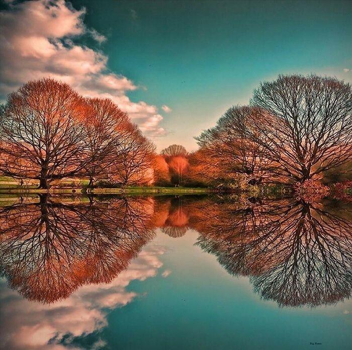 Гайд-парк прекрасен осенью