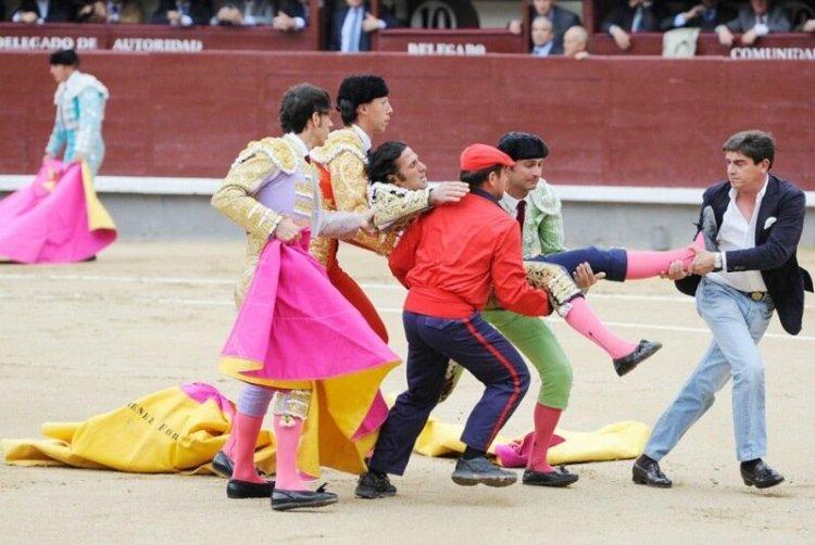 Коррида запрещена: как в Испании впервые за 35 лет прекратили бой быков