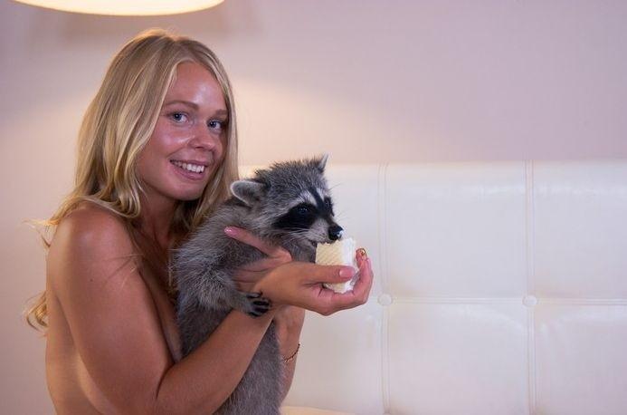 Московский зоопарк требует возместить моральный вред еноту, участвовавшему в эротической фотосесси енот, новые привычки, травма, фотосессия