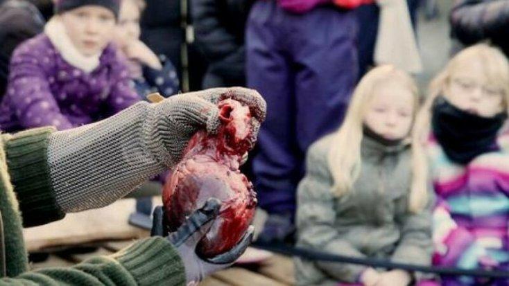 Как датский зоопарк приглашал детей посмотреть на вскрытие льва