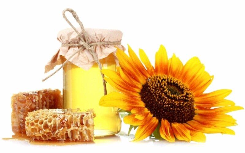 Рецепт медового «Эликсира Жизни»: народное средство от ста болезней!