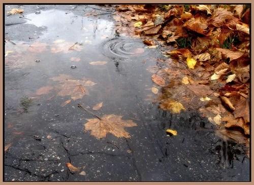 Уплывает Осень...