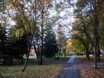 Herbst-1