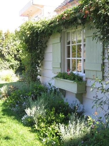 дома увитые розами идеи для дачи своими руками сад