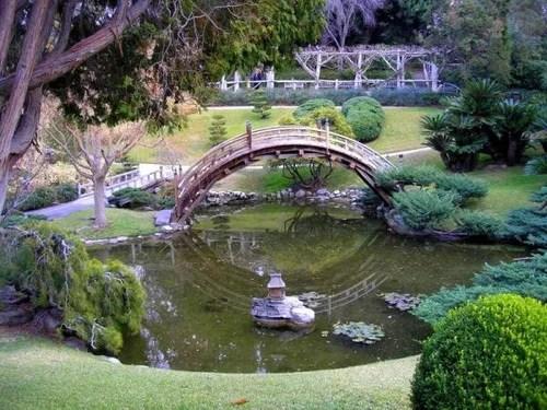 пруд в саду фото