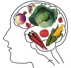 доводы против вегетарианства