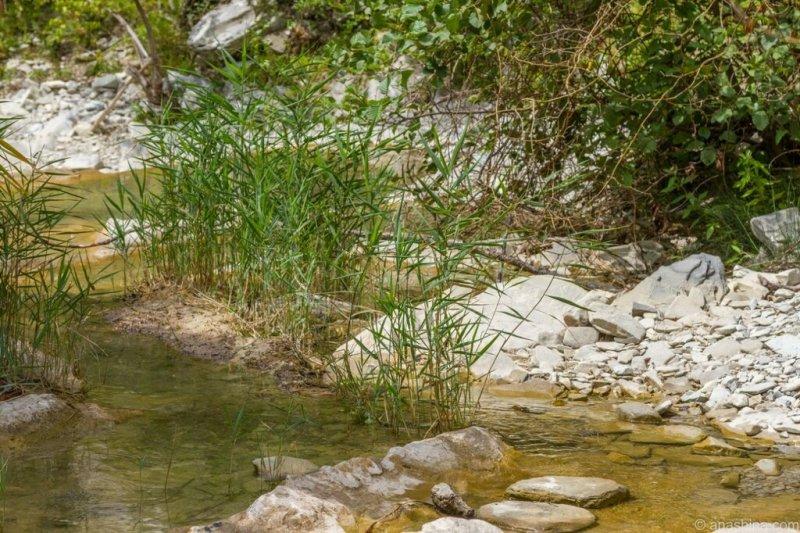 Река Ачибс, Кавказ