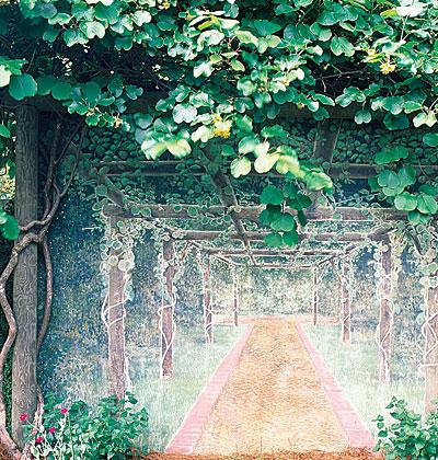 декор сада на даче своими руками