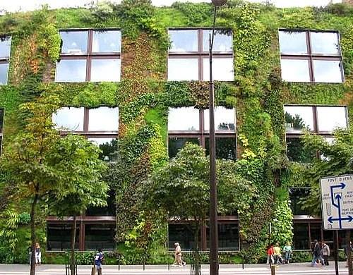 Зеленые стены вертикальный сад озеленение фасада здания