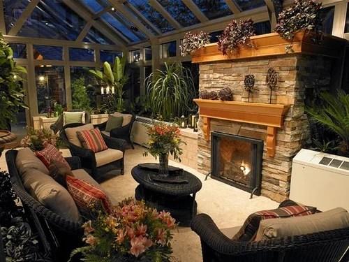 Полезные растения для дома и офиса