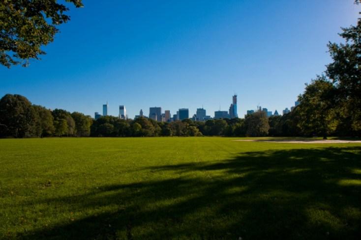 Большая лужайка в Центральном парке Нью Йорка