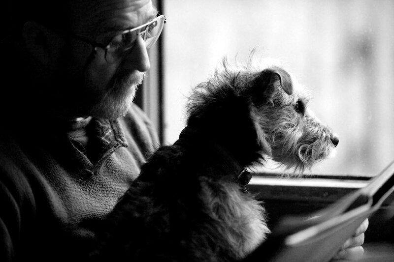 Категория «Лучший друг человека» и путешествие на поезде в качестве первого места. (Фото Fiona Sami)