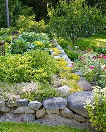 фото красивых садов