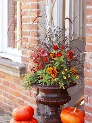 идеи для декорирования дачи цветами