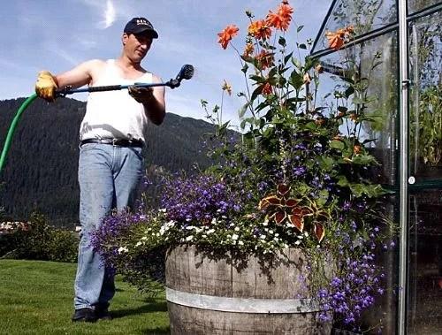 Что необходимо сделать в саду в июле