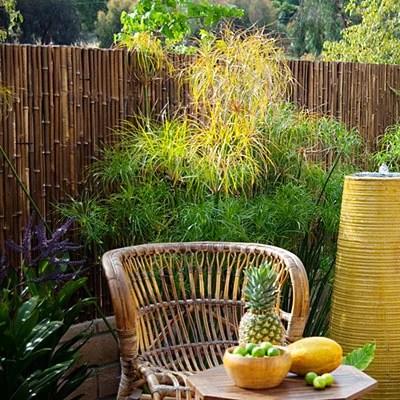 фото патио в саду