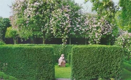 зеленая гостиная оформление дизайн сада