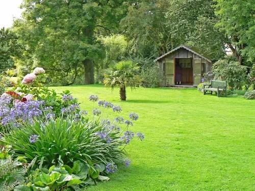 красивый газон на даче