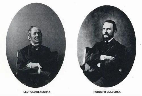 Leopold & Rudolf Blaschka/Леопольд и Рудольф Блашки. Стеклянных дел мастера