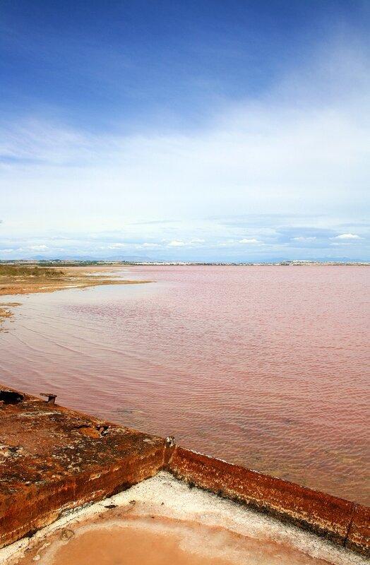 Торревьеха розовое озеро отзывы