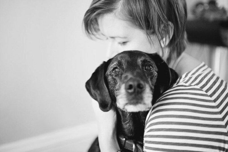 Фото: Хозяева прощаются с больными собаками перед усыплением любимцев