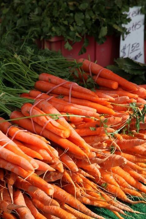 Камни в мочевом пузыре - лечение морковью