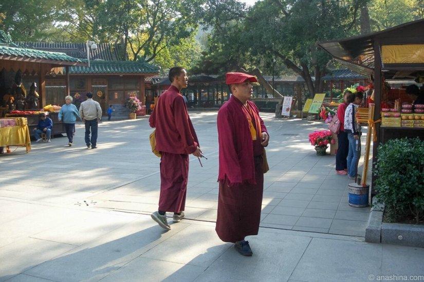 Монахи, Бадачу, монастырь Лингуан