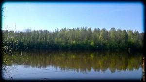 Историческая родина, Волхов, деревня Ульяшево