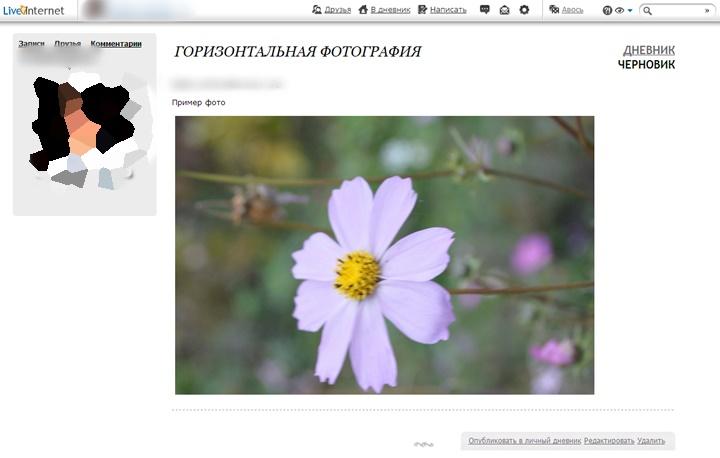 эти как в блоге перевернуть картинку или фото ориентация