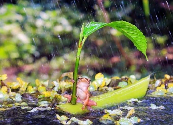 Прекрасная природа, новые фотографии