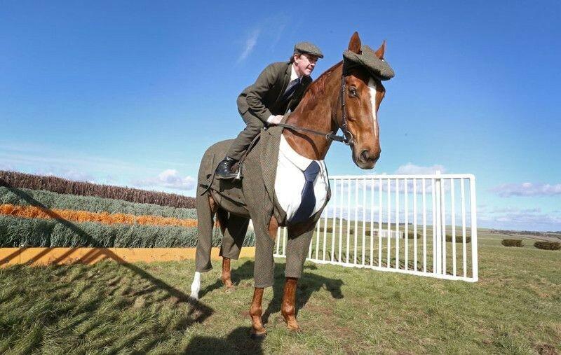 Костюм тройка для коня, с галстуком и кепочкой (фото, видео)