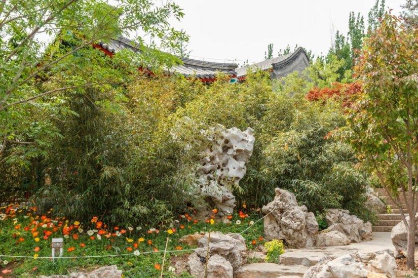 Бамбук и камни