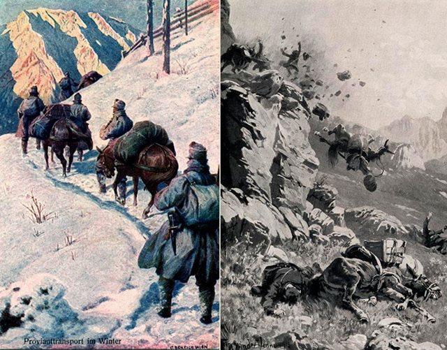 Как животные участвовали в Первой мировой войне
