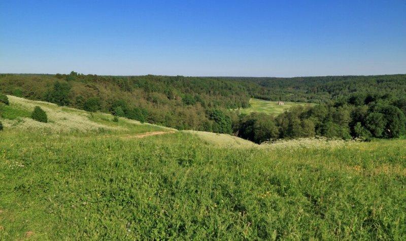 Пейзаж в Ильинском