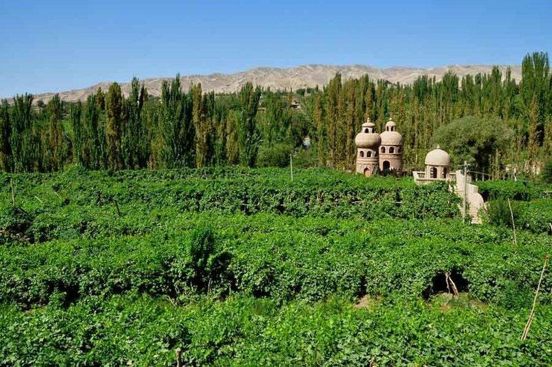 Турфанская долина виноградников в китайском оазисе посреди пустыни