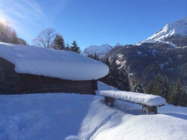 Швецарские горы