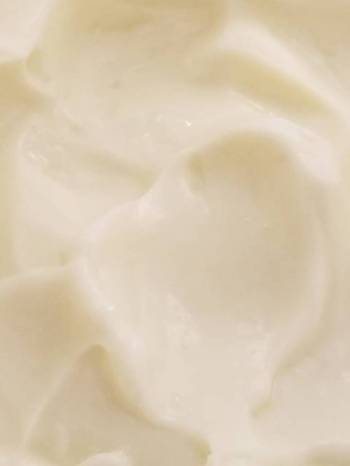Tricia's Homemade Mayonnaise