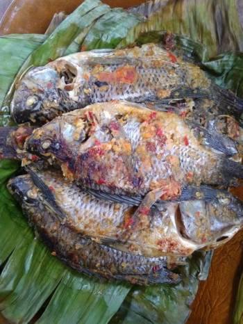Pepes Ikan Mujaer Ungkeb