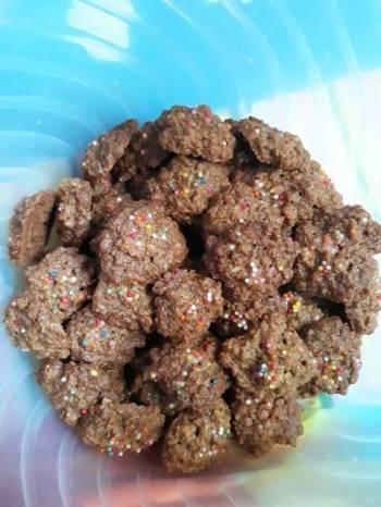 Kue kering oatmeal (quaker oat)