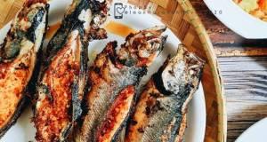 Ikan Cencaru Kelapa