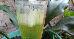 Sirup Melon Splash