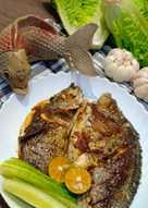 Ikan Baronang Bakar : baronang, bakar, Resep, Bakar, Baronang, Teflon, Sederhana, Rumahan, Cookpad