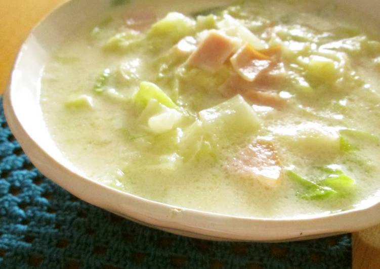 Cabbage and Ham Cheese Soup