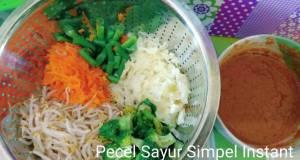 Pecel sayur instant