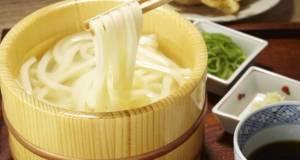 Authentic Gourmet Vegan Udon Noodles