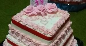 Wedding Cake Basic Sponge Cake Coklat