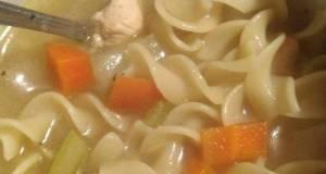 Scain's Comfort Chicken Noodle Soup For Crockpot